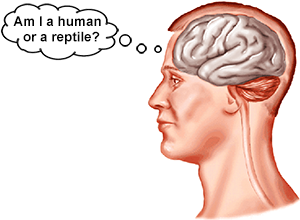 Brain asks: Am I human or a reptile?